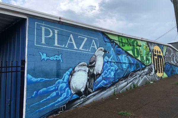Plaza Art Nashville